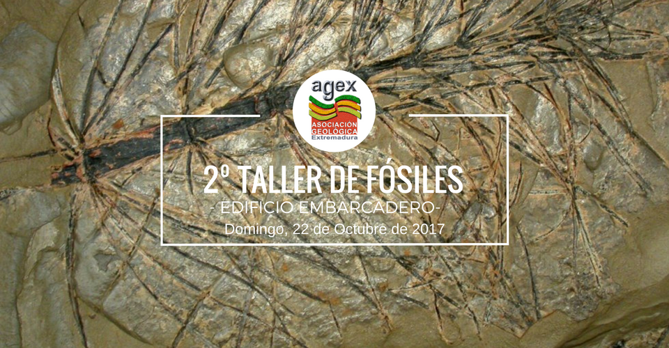 2 taller geologico caceres 2017